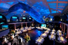 For some added excitement you can host your wedding reception or event at the American Museum of Natural History
