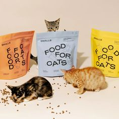 Craft Packaging, Food Packaging Design, Pretty Packaging, Packaging Design Inspiration, Pet Branding, Food Branding, Pet Supplements, Start Ups, Product Label