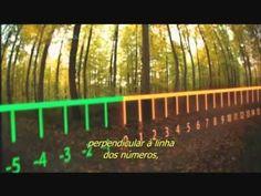 Gauss e Números Complexos