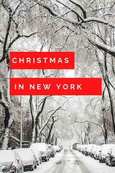 christmas nyc   winter nyc   manhattan winter   manhattan   central park christmas   what to do in new york   christmas activities in nyc   christmas in the us #nyc #nycchristmas #winternyc #unitedstates