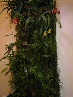 Vertikaler Garten mit Orchideen