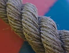 Rope   Flickr - Photo Sharing! Dreadlocks, Hair Styles, Photos, Beauty, Hair Plait Styles, Pictures, Hair Makeup, Hairdos, Haircut Styles
