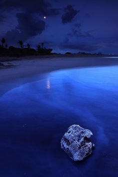 Blue Moon ... seashore night l by tropical Living - Jessy Eykendorp on Flickr
