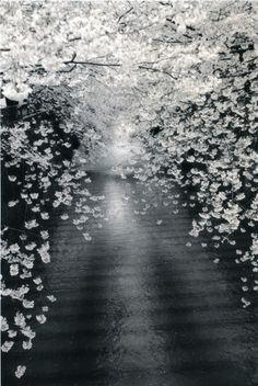 Yamamoto Masao  - works/kawa-flow L'occhio non vede cose ma figure di cose che significano altre cose. Italo Calvino