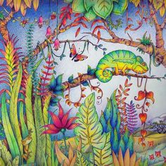 Take a peek at this great artwork on Johanna Basford's Colouring Gallery! Secret Garden Coloring Book, Coloring Book Art, Colouring Pages, Adult Coloring, Enchanted Forest Book, Enchanted Forest Coloring Book, Magical Jungle Johanna Basford, Joanna Basford, Johanna Basford Coloring Book