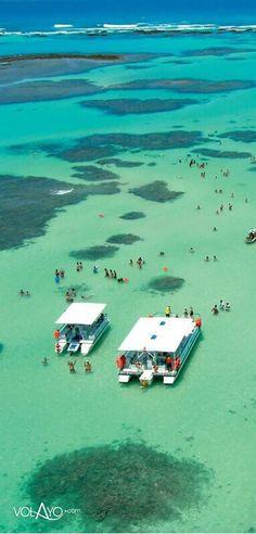 Maragogi ilha paradisíaca ⛵