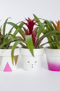 3 Ways To Decorate Spring Flower Pots | Dream Green DIY