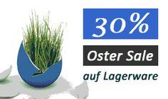 30 % auf Lagerware von Richmoments