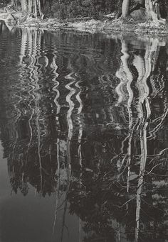 1934 Reflections by Ansel Adams 84.90.742