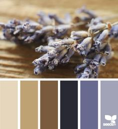 dried tones color palette from Design Seeds