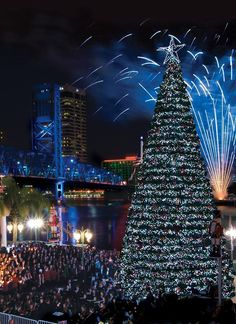 Jacksonville Florida annual lighting of the Christmas tree