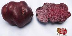 Για τους Ευρωπαίους ή πατάτα είναι μια σχετικά πρόσφατη απόλαυση. Δεν συμβαίνει όμως το ίδιο και με τη λατινική Αμερική με τα εκατοντάδες διαφορετικά είδη πατάτας όπως η κόκκινη.