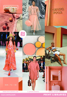 Cantaloupe [020-72-30] Coloro x WGSN 2020 Top 5 Key Colours