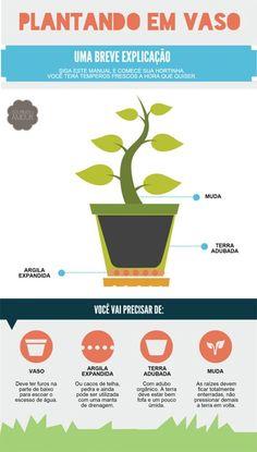 blog de decoração - Arquitrecos: Trazendo o verde para dentro de casa Eco Garden, Home Vegetable Garden, Dream Garden, Garden Pots, Backyard Farming, Nature Plants, My Secret Garden, Garden Inspiration, Beautiful Gardens