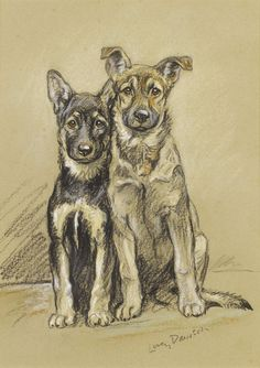 Julie and Sandy Alsatian Puppies by Lucy Dawson | Art Posters & Prints