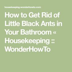 How to Get Rid of Little Black Ants in Your Bathroom « Housekeeping :: WonderHowTo Guttate Psoriasis Treatment, Ants In House, Pole Classes, Black Ants, Household Chores, How To Get Rid, Take Care Of Yourself