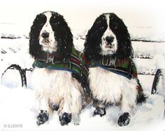 Where ART Lives Gallery Artists Group Blog: JEANNE ILLENYE custom dog portrait two English Springer Spaniels snowy park bench Alice in Wonderland statue Central Park, NYC