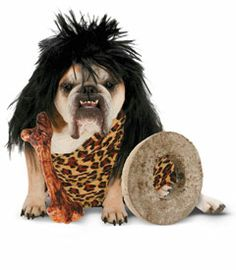 cave dog costume