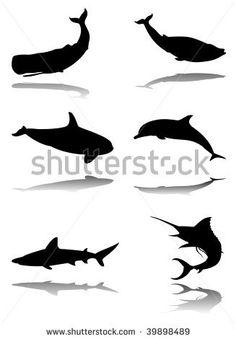 stock vector : Six silhouettes with reflex of marine animals: sperm whale, blue whale, orca, dolphin, shark, marlin
