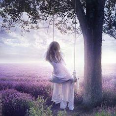 Lavender field - Digital Photo Art by Julia Popova