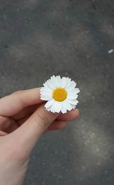 Image discovered by Geronimo. Find images and videos about summer, white and flowers on We Heart It - the app to get lost in what you love. Sky Aesthetic, Flower Aesthetic, Aesthetic Photo, Aesthetic Pictures, Daisy Wallpaper, Summer Wallpaper, Hand Photography, Hand Flowers, Aesthetic Wallpapers