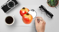 Pomegranate : Photo, Vector, Black and White Outline Copy