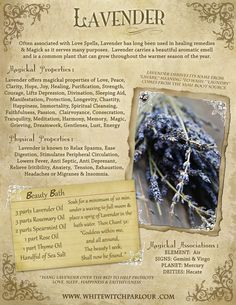 LAVENDER available here: http://www.whitewitchparlour.com/category-s/1875.htm