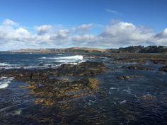 Flinders at low tide