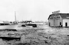 McDougalls boatyard the worse for wear. Hurricane Carole.