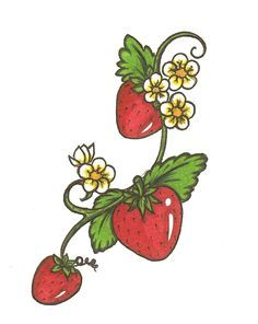 possible strawberry tattoo, if I ever get the gumption - Thinks Tatto Strawberry Drawing, Strawberry Tattoo, Strawberry Flower, Strawberry Plants, Strawberry Clipart, Strawberries Garden, Strawberry Kitchen, Raspberries, Vine Tattoos