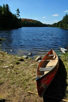 "See 124 photos and 22 tips from 1304 visitors to Algonquin Provincial Park - West Gate. ""Absolutely beautiful park, especially in Autumn when the. Kayaking, Canoeing, Algonquin Park, Rocky Shore, Canoe Trip, Canada Travel, Wonderful Places, The Great Outdoors, Places To See"