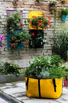 """The hanging planters and planting bags in bright colours make a garden, deck or balcony pop even more. I love the way The Hanging Pockets® """"stack"""" on the wall - almost like framed art in a garden! Balcony Hanging Planter, Bright Colours, Green Bag, Planting, Framed Art, North America, Color Pop, Deck, Bloom"""