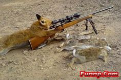 funny hunting pictures - Google Search