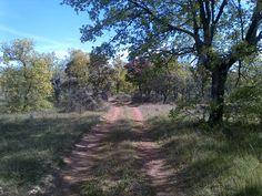 Solo o en compañía, en bicicleta o a pie, recorrer el Camino siempre es un placer para los sentidos.  Y si quieres disfrutarlo de una manera diferente entra en www.caminodesantiagoreservas.com.