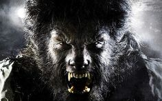DIY Werewolf Costume - maskerix.com