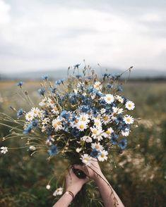 Fall Wedding Colors, Wedding Flowers, Burgundy Wedding, Summer Wedding, Wedding Plants, Wild Flowers, Beautiful Flowers, Flowers Nature, Colorful Flowers