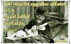 Blog Page, Charlie Chaplin, Motivation, Movies, Movie Posters, Films, Film Poster, Cinema, Movie
