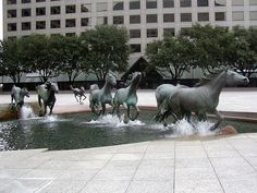 Mustangs By Robert Glen | Las Colinas, TX