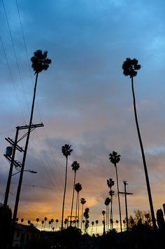 Los Angeles | California #travel #travelinspiration #travelphotography #losangeles #YLP100BestOf #wanderlust