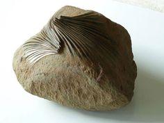 El escultor español José Manuel Castro López moldea y retuerce las rocas como si las derritiese. Sus esculturas de rocas tienen la sorprende...