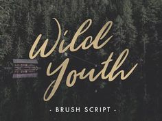 Wild Youth - Free brush script via Behance Free Typography Fonts, Best Free Script Fonts, Hand Lettering Fonts, Handwritten Fonts, Calligraphy Fonts, Font Free, Free Cursive Fonts, Sans Serif, Summer Font