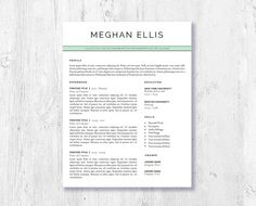 Word 2007 Resume Template Professional Cv Template  Cv Template For Word  Creative Resume