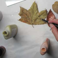 Painting Glassline on a leaf