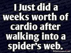 So true. cardio, spiders, laugh, spider webs, funny pictures, funni, funny commercials, quot, true stories