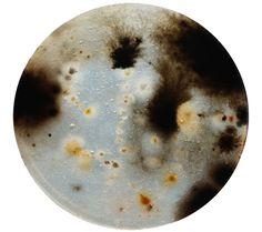 Example of grown soil bacteria in agar.