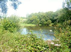 La Rivière de Pont-l'Abbé : l'étang du Moulin Neuf, partie amont (limite communale entre Tréméoc et Plonéour-Lanvern)