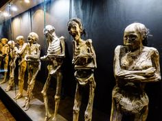 Things to do in Guanajuato Museo Momias mummy