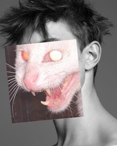 Naro Pinosa [ Cat Power In this hole ] Collages, Collage Art, Photomontage, Go For It, Street Art, Dark Photography, Funny Art, Statue, Portrait