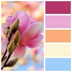 pink + peach + sky blue
