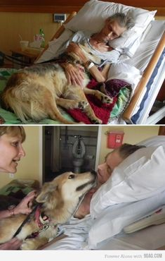 A dying man gets his last wish-to reunite with his dog.